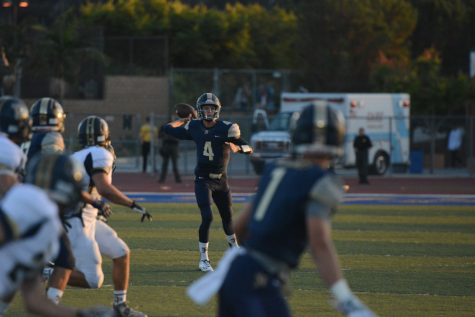 Stallions Start Year With New Quarterback