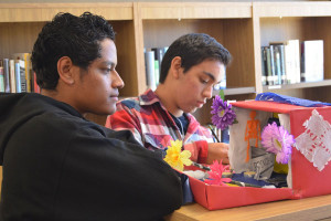 """DAY OF THE DEAD: Sophomores Victor Rodriguez and Chris Gardea evaluate a Dia De Los Muertos project in the library. The project was a part of a Spanish class study of a holiday important to Latin American culture. Students made """"altars"""" to either a deceased family member or to a pop culture icon. Students had to include items that were symbolic of the person's life.  They were judged in the categories best overall, most creative and most sentimental value."""