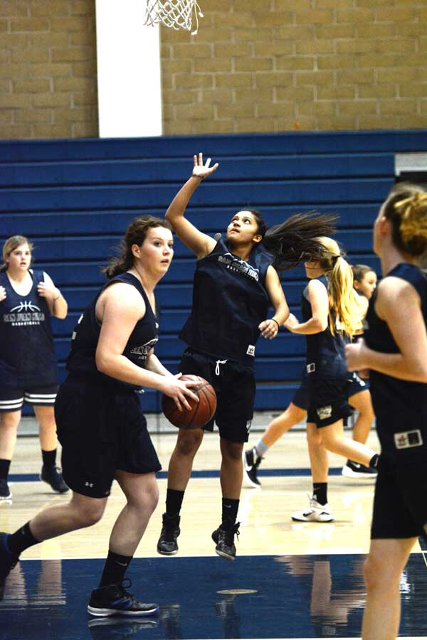 Hadley Dayton (11) snatches the ball from a richocheted shot by Sade Najafinia (12) during a practice scrimmage.
