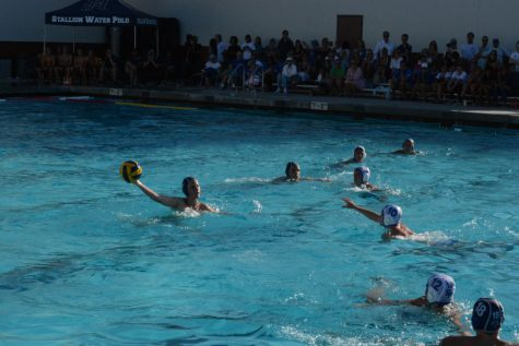 Water Polo Swims Ahead of Competition
