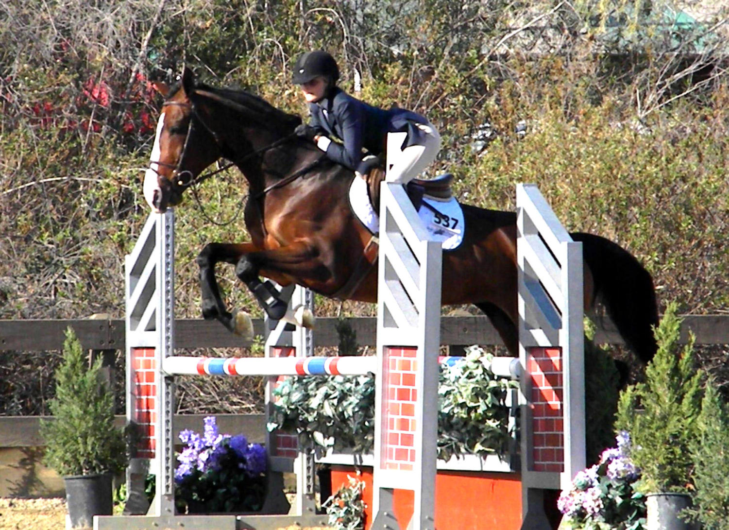 Virginia Smith competes in an International Equestrian League competition in Orange County.