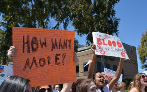 April 20 National Student Walkout Promotes Gun Control