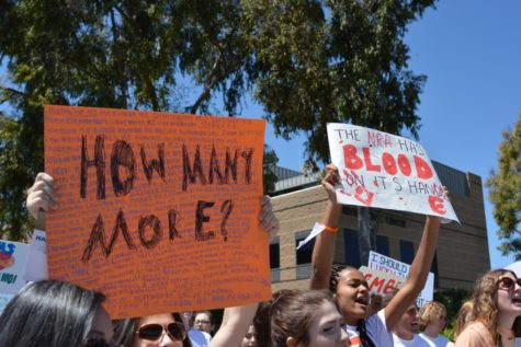 Students Demand Change in Planned National Walkout