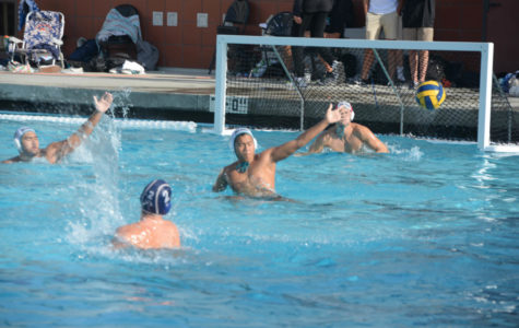 Water Polo Comes Up for Air