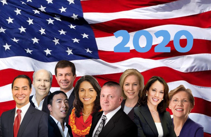 Candidates Step Up for the 2020 Elections