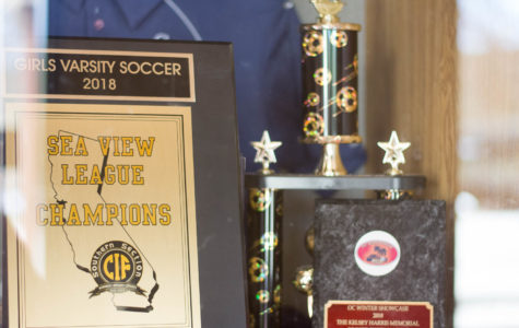 In the 2018 season, the girls varsity soccer team won five games, lost zero, and tied three getting first in the Sea View League. Even against Trabuco Hills, Mission Viejo, Capistrano Valley, and El Toro, San Juan came first.