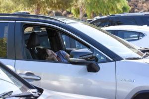 Many Parents Lack Proper Driving Etiquette