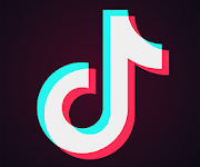 In 2018, TikTok was released worldwide and  has seen unprecedented growth ever since. Its popularity, especially amongst teenagers, makes it one of the most popular apps of this generation.