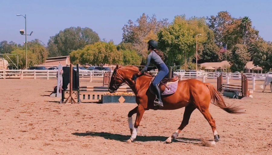 Emma Linnea, a senior at SJHHS, practicing groundwork to prepare for her upcoming competitions with the Dana Smith Show Team in San Juan Capistrano.
