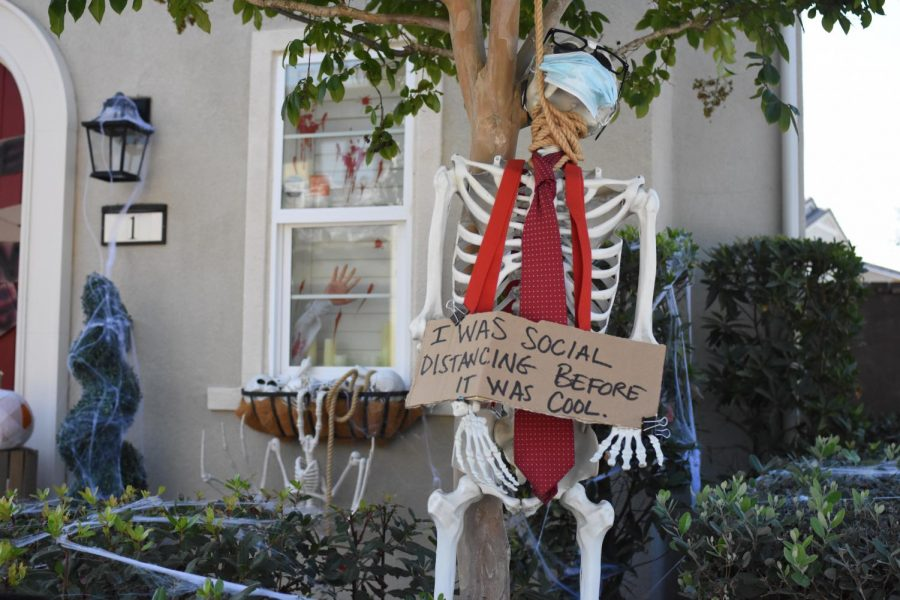 Halloween is presumed to look different this year under the dangerous circumstances, potentially meaning no traditional festivities such trick-or-treating or parties. However, one thing that is expected to remain unchanged are Halloween decorations.