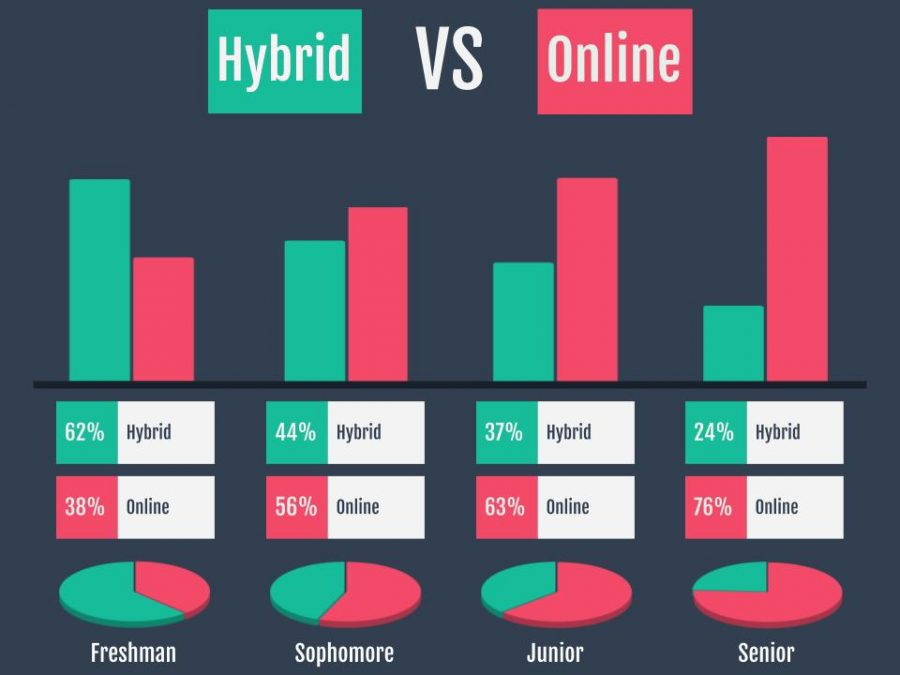 After CUSD gave students the option to remain online or partially in person, many students choose to stay online. As the class size gets older, the percentage of hybrid students decreases with only 24% of seniors now in-person.