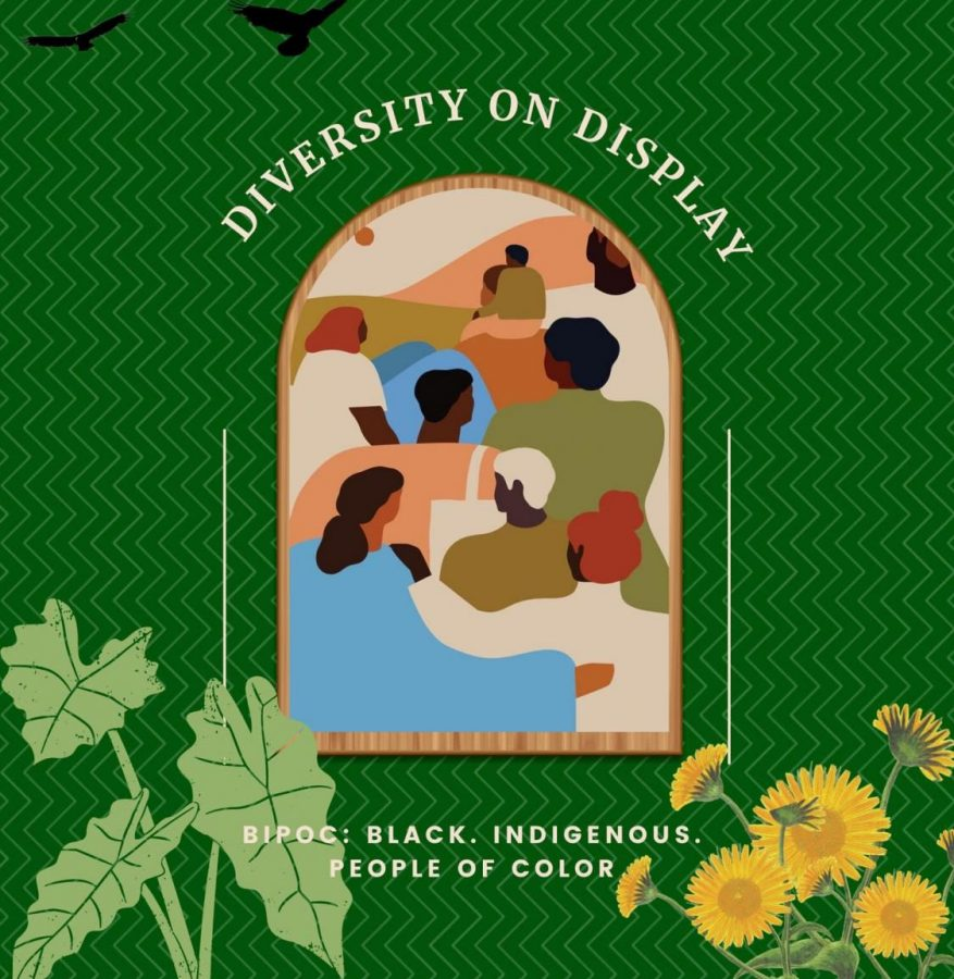 Diversity+on+Display+is+a+virtual+show+of+monologues%2C+scenes%2C+and+songs+put+on+by+the+SJHHS+drama+departments+BIPOC+students.+The+show+will+stream+on+April+30th.